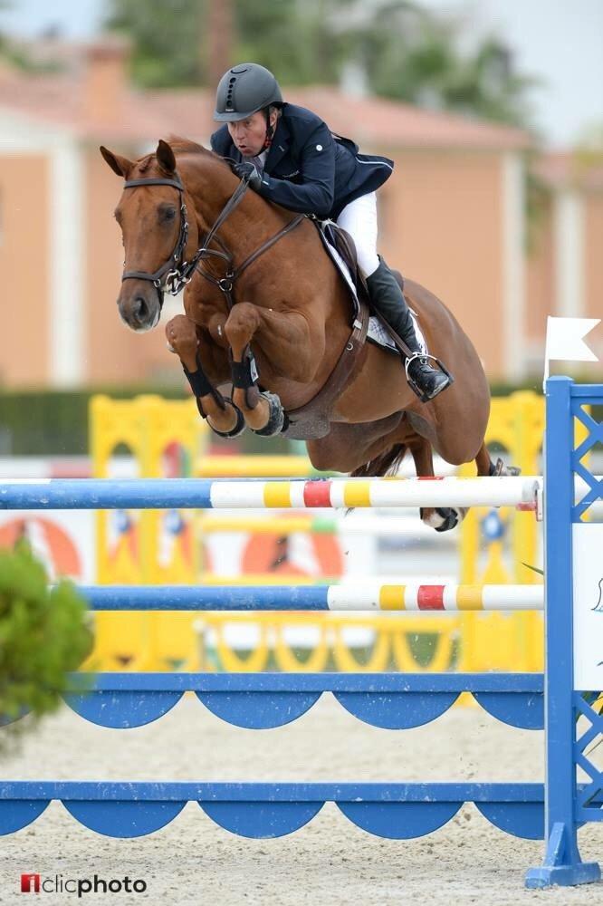 #mediterranean equestrian tour-2017 #Osl...
