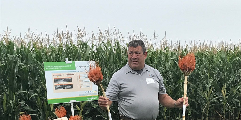 York, NE Golden Harvest agronomists recommend four practices to help prevent #corn rootworm:  http:// ow.ly/nmNX30fXJN9  &nbsp;   #Agronomy #plant18<br>http://pic.twitter.com/vKNNORI5zq