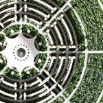"""Šovakar septiņos #kkckino režisora Roksana Mīdova filma """"Paradīze vai aizmirstība"""" (2012, ASV). Ieeja bez maksas, vietu skaits ierobežots."""