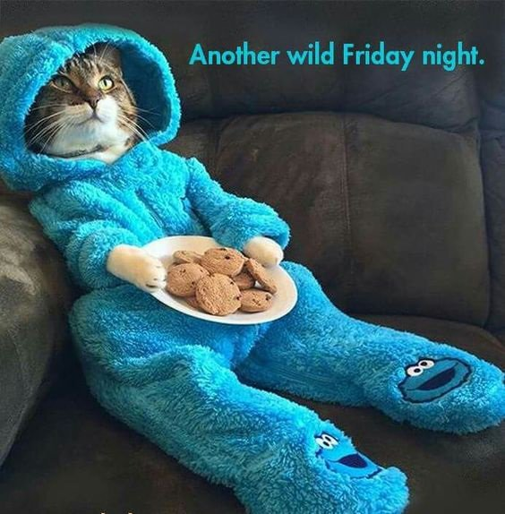 It&#39;s Friday and I&#39;m going to PARTY!  And by party, I mean stay in and read...  #amwriting #amreading #FridayFeeling #Friyay <br>http://pic.twitter.com/MhEu8iNPI9