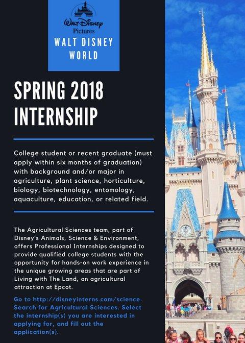 Ksu Food Science On Twitter Disney World Is Looking For Interns