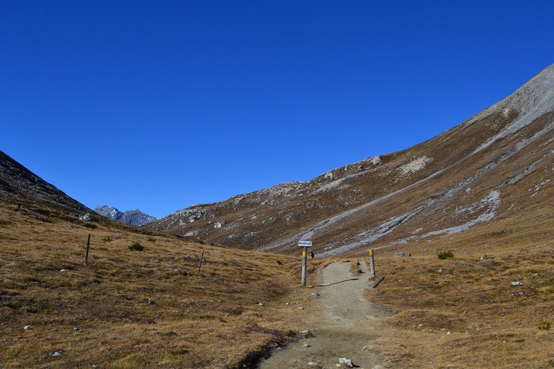I Spent Some Awesome Days Last Weekend In The Swiss National Park Around Zernez Autumn Weather Was Just Perfect Pic Twitter Com Fb5w8oe5co
