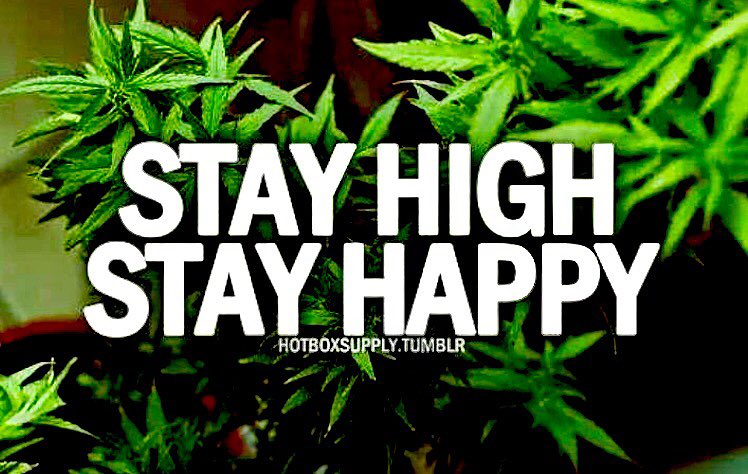 #FF @AlexandarXoX @hippieluvbud62 @Hippie_of_Love @laurajax1 Thanks for all the  #Stoners<br>http://pic.twitter.com/bqfsLW2hEG