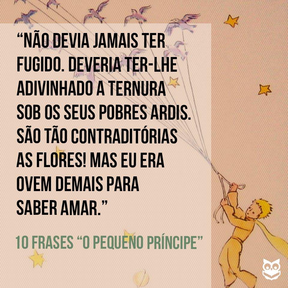 Skoob On Twitter 10 Frases De O Pequeno Príncipe Httpstco