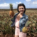 🍍🍍🍍 time!!!! I've always wanted to check out a pineapple farm! #maui #travel ❤️