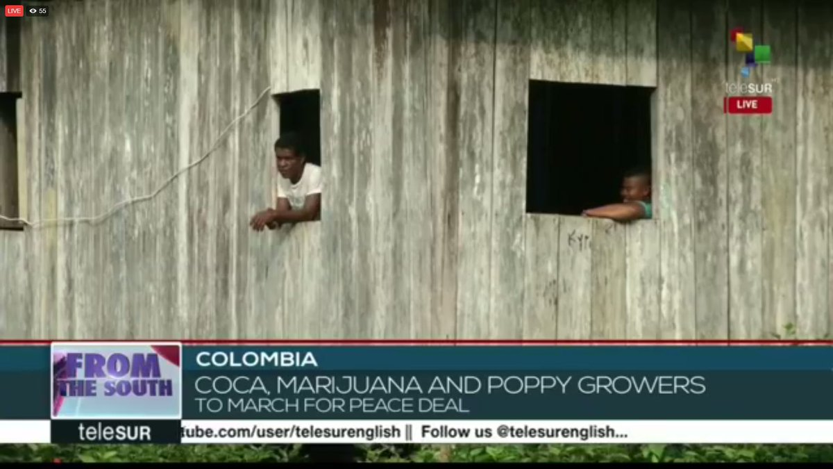 #FromTheSouth | More than 120 social leaders have been killed in Colombia in 2017 so far.