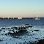 Retour à Provincetown par jolie brise de SW, marina fermée pour l'hiver, Spica seul au mouillage.