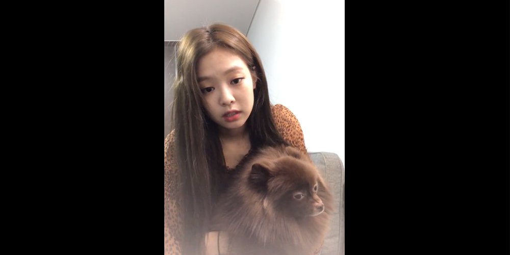 Black Pink's Jennie says 'Sorry' to questions about the group's comeback during personal 'V Live' https://t.co/96gQWQCY7I