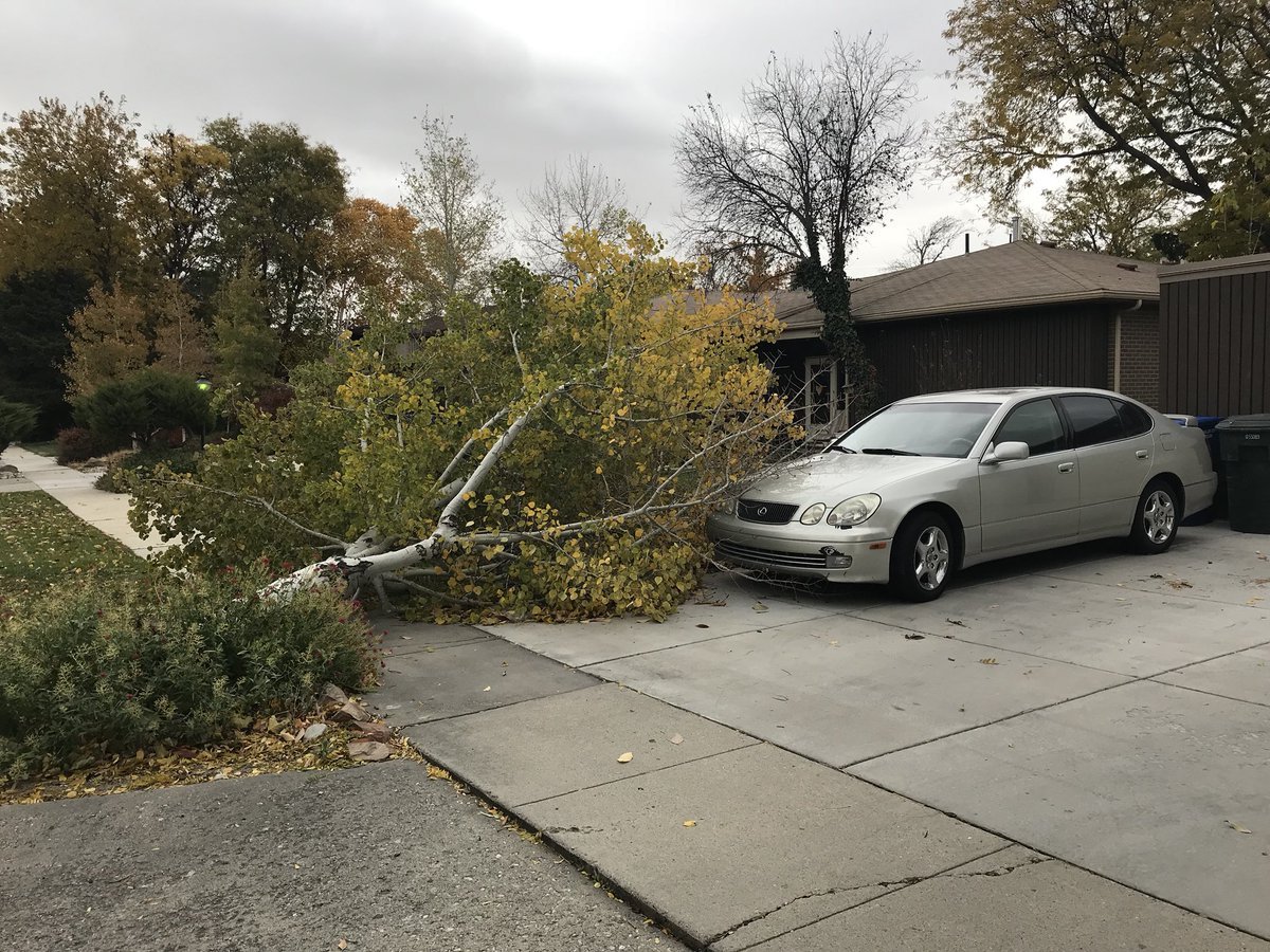 Crazy #Winds today in #WVC my mom came out to find this  partially on their car. @weathercaster @kslweather @NWSSaltLakeCity<br>http://pic.twitter.com/jmy8gy371R