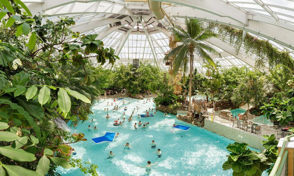 Subtropisch genieten! 🌴Boek nu een weekend of midweek Center Parcs al vanaf € 199 voor max. 4 personen 🏊♀️ https://t.co/PcJficvbe1 https://t.co/AzHizT9Dlu