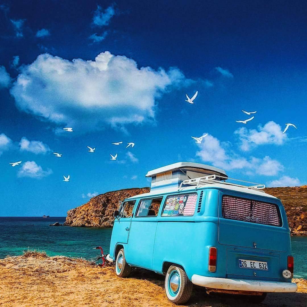 Ağaçtan, maviden, denizden uçar  Kendind...