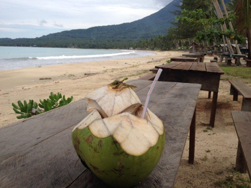 Image result for minum kelapa muda