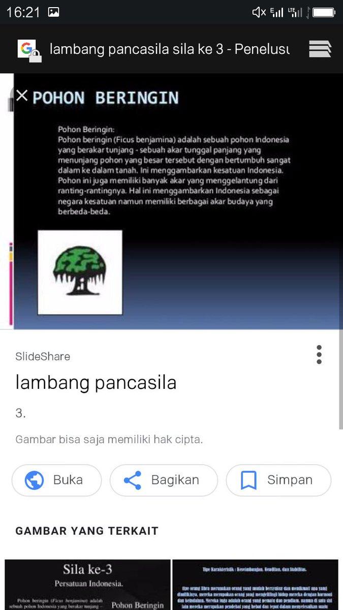 rochmatul fajri on pohon beringin ilmupengetahuan