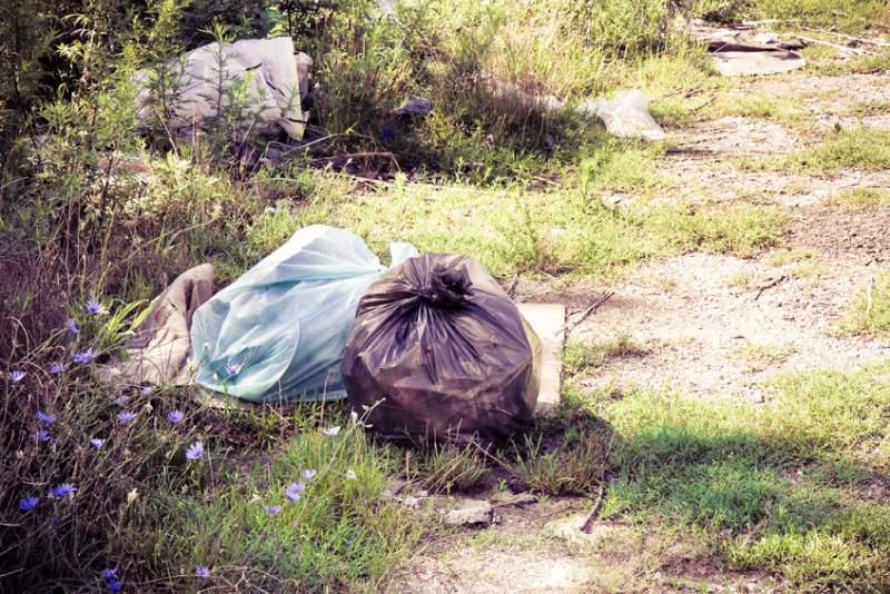 Farmers demand action as fly-tipping in...