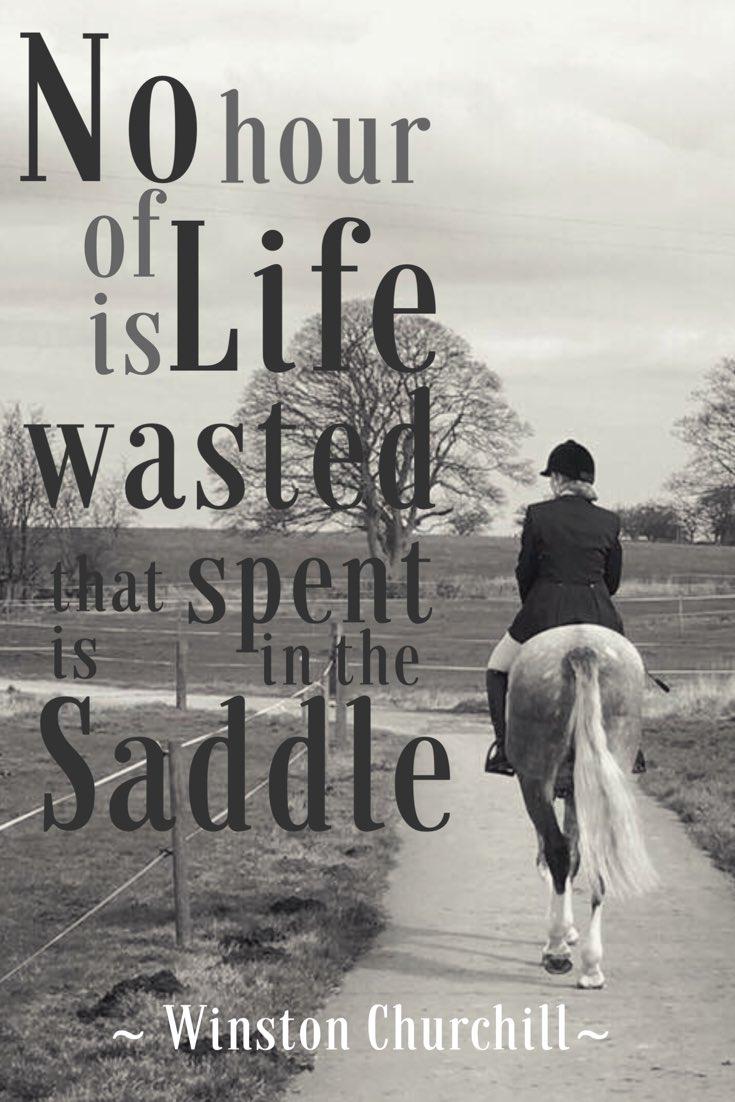 🙌🏻🙌🏻🙌🏻 https://t.co/5p6Ro3x6Lh #horseblo...
