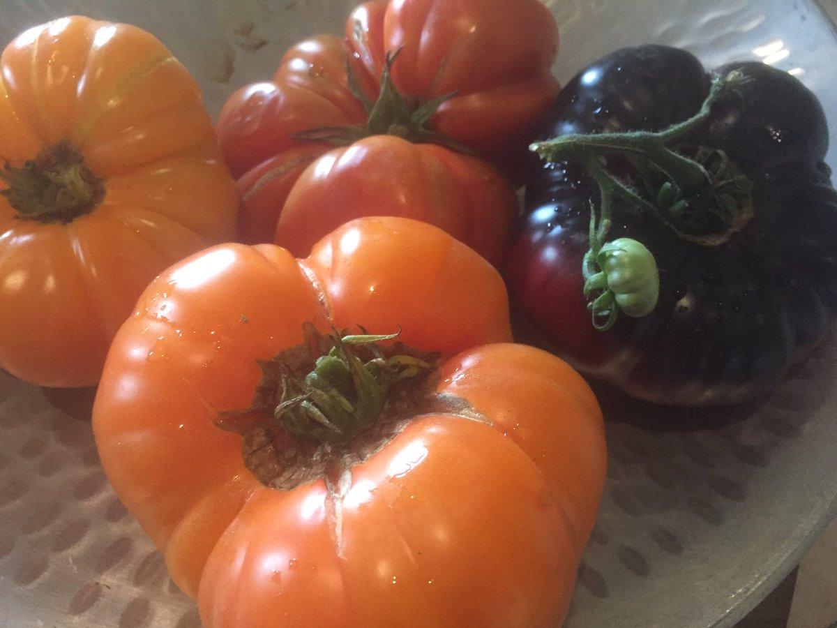 Saturday farmers 👨🌾 market ✔️ #healthyl...