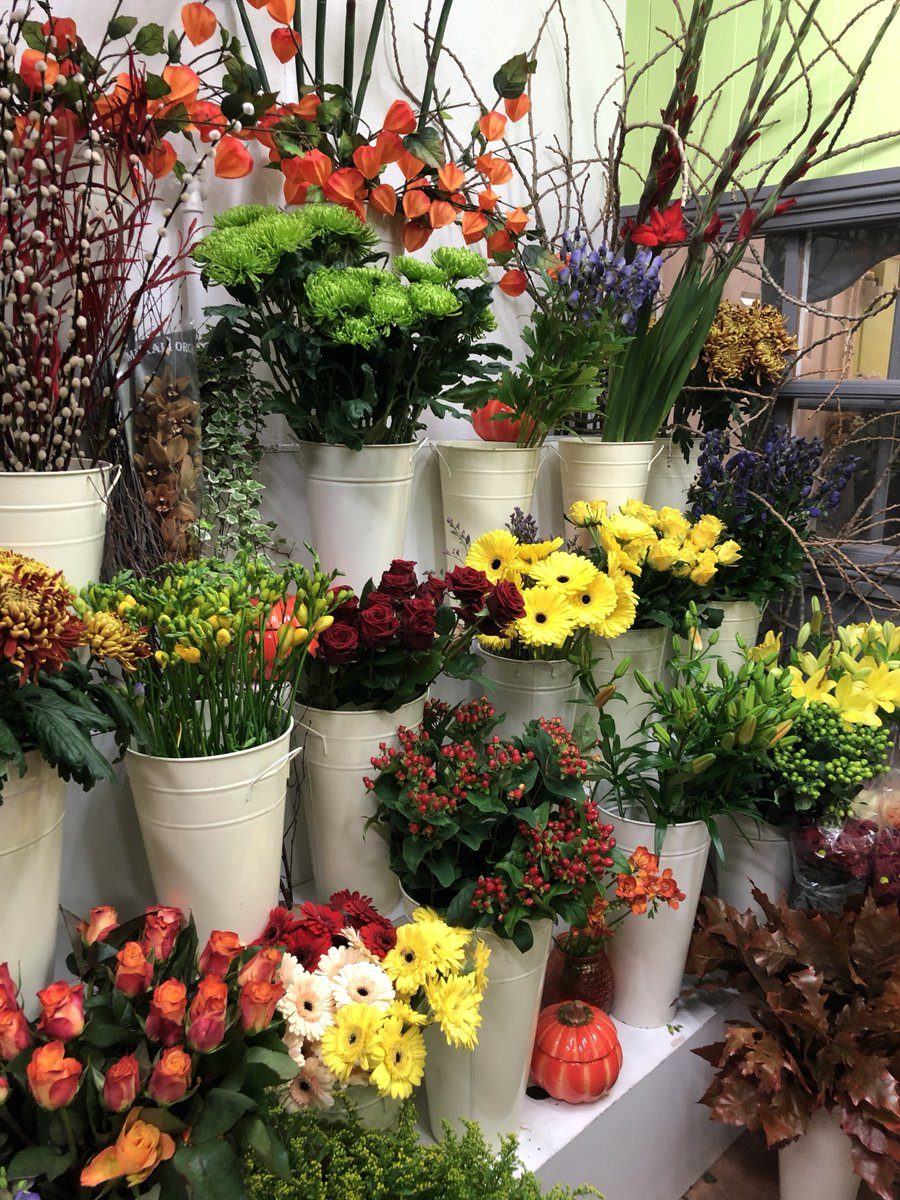 Katherines florists on twitter a peek at some amazing flowers on katherines florists on twitter a peek at some amazing flowers on display at katherines florists call 0191 261 6000 to order your bouquets perfect as an izmirmasajfo