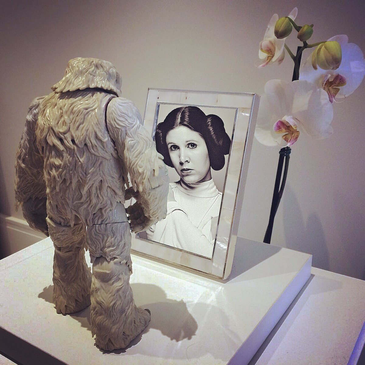 – I miss you... so much. #CarrieFisher #happybirthday #AlwaysWithUs #PrincessLeia <br>http://pic.twitter.com/JEJ6Jo9Gdm