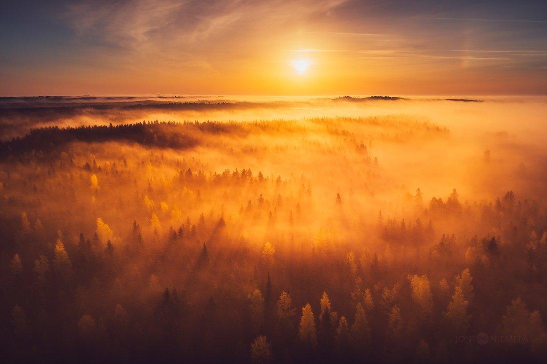 Deviantart On Twitter A Sprinkling Of Sun Across Misty Autumn
