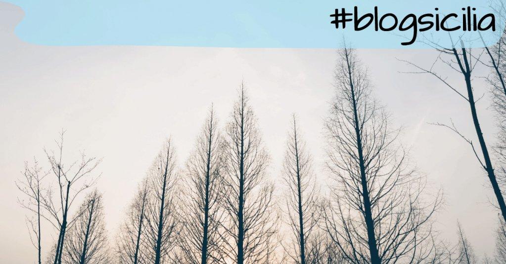 """""""Sotto gli alberi più grandi si trova il riparo migliore.""""  Buonasera da #blogsicilia"""