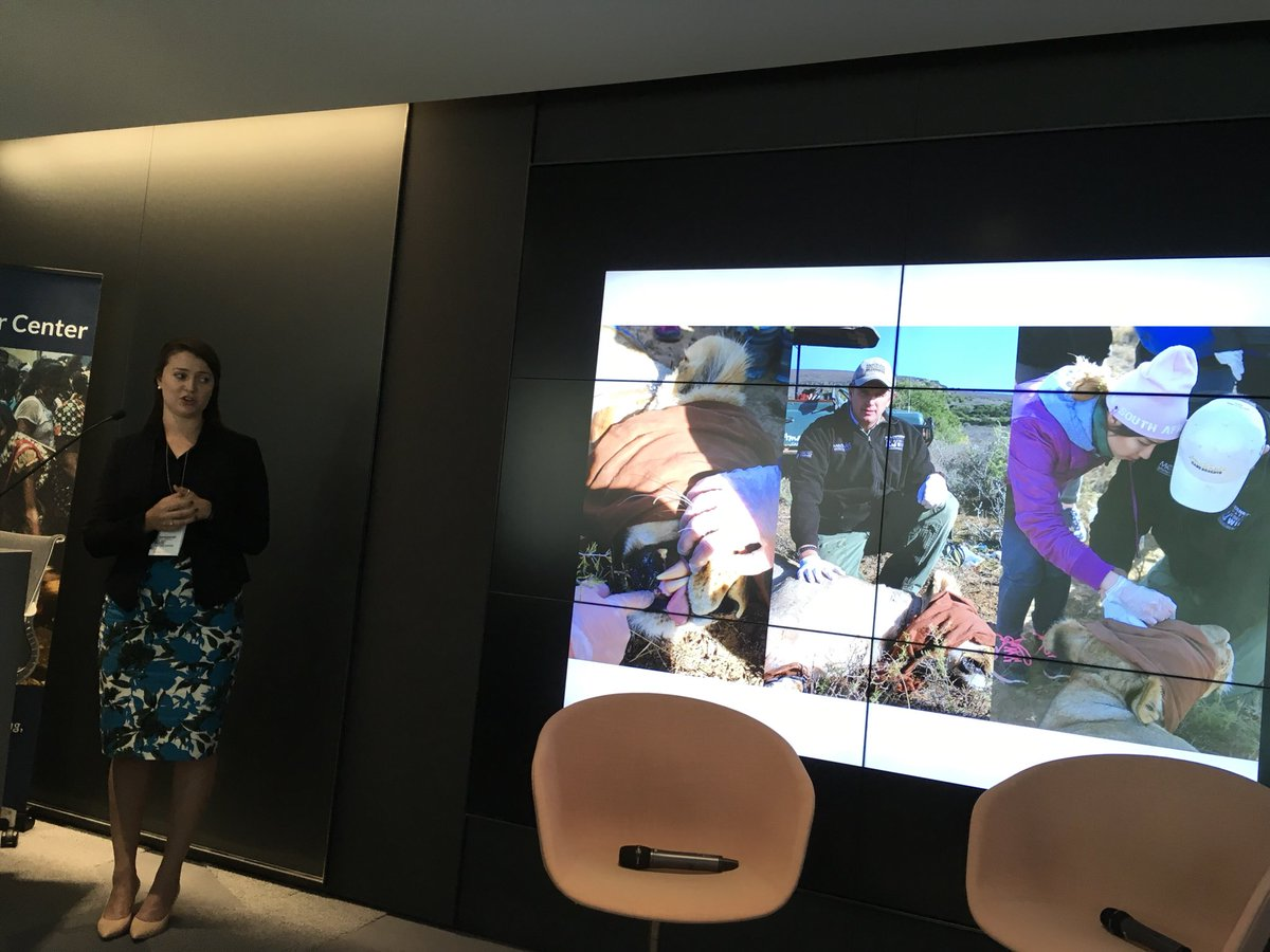 . @kelsemery traveled with a veterinarian doing procedures on animals on game preserves across South Africa. #Pulitzerweekend17