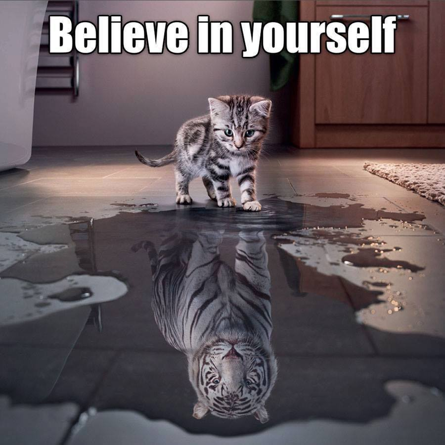 Believe in yourself.   #Faith #Trust #Love #Hope #Confidence <br>http://pic.twitter.com/CTrbFb47DT