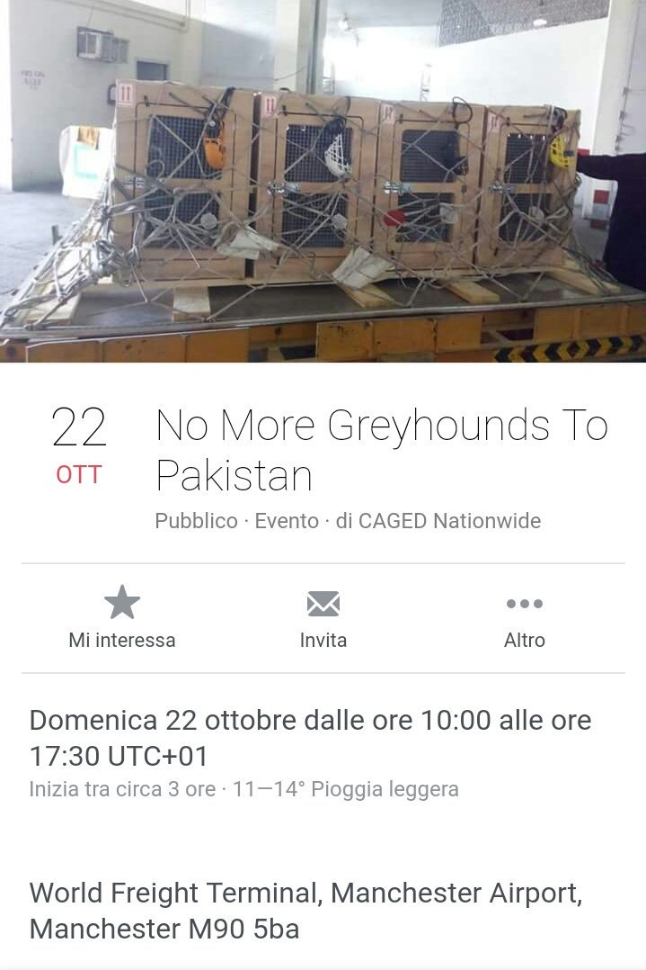 #Urgent  #AnimalRights  #Demo #GreyhoundExports #Today #10am #Manchester ManchesterAirport/WorldFreightTerm   https:// m.facebook.com/events/9069365 59464026?%3Fti=ia &nbsp; … <br>http://pic.twitter.com/oxvpQAcsci