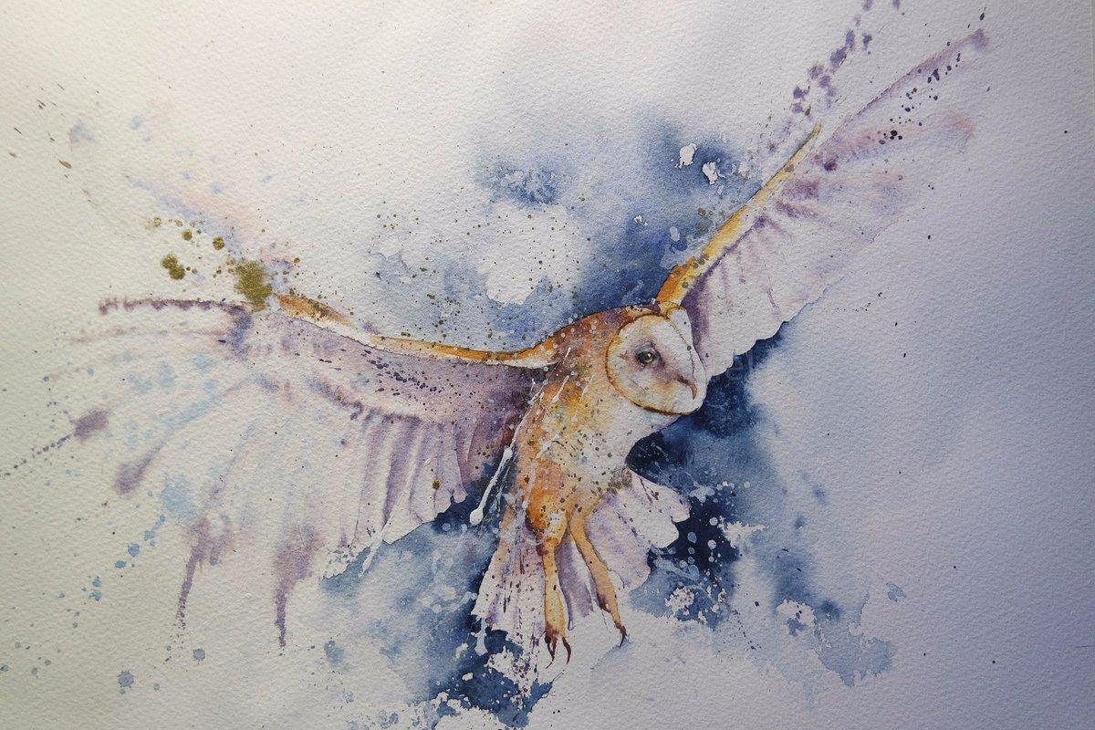 "Rachel Toll On Twitter: ""Happy Sunday X #owls #watercolour"