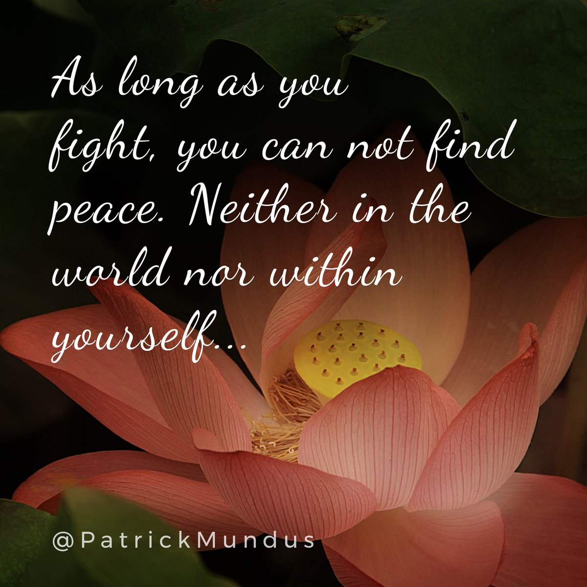 As long as you fight, you can not find #peace. Neither in the world nor within yourself ... <br>http://pic.twitter.com/uFb4H1xGu4