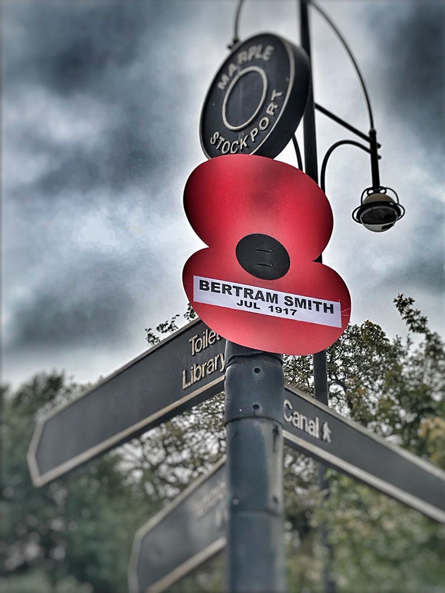 One of the Marple Street Poppies