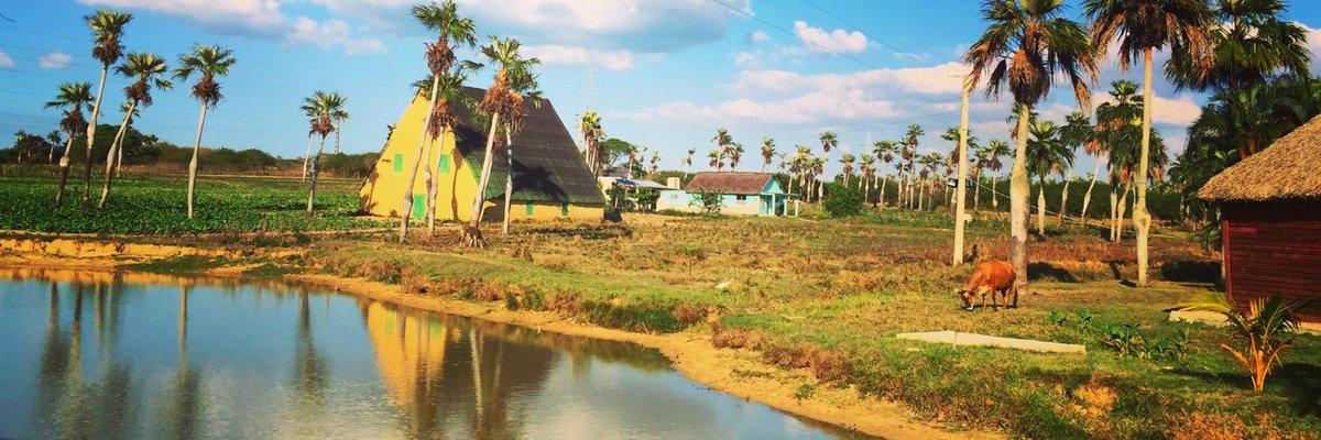 Cost Guide - What We Spent In Cuba ------&gt;  http:// ow.ly/EVo330g28g5  &nbsp;   #travel #traveltips<br>http://pic.twitter.com/vjIbzvmGPi