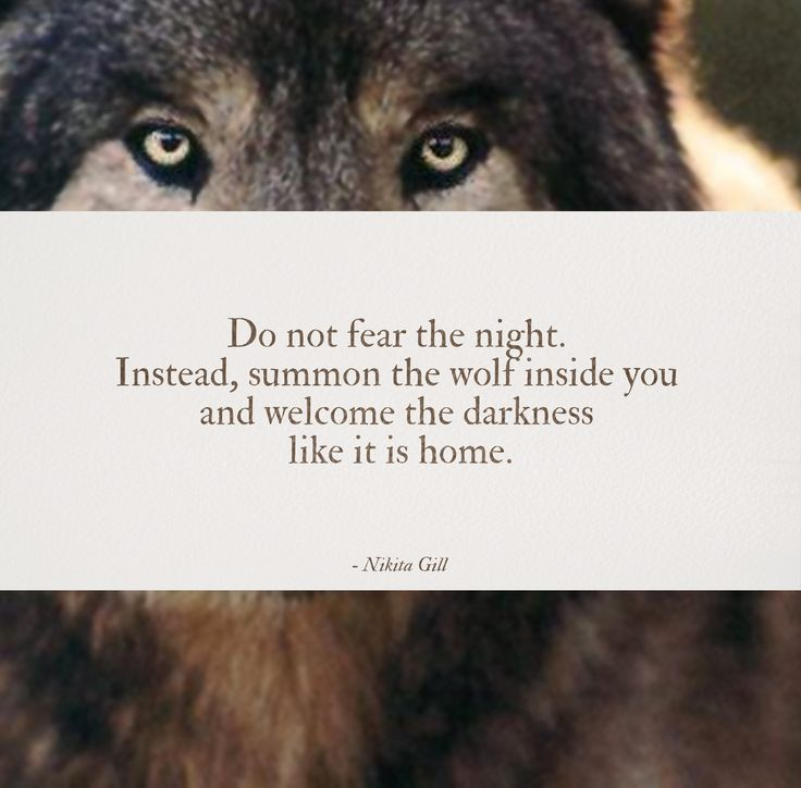 &quot;Do not fear the night. Instead, summon the wolf inside you and welcome the darkness like it is home.&quot; - Nikita Gill #quotes <br>http://pic.twitter.com/y4Q9epeoPS