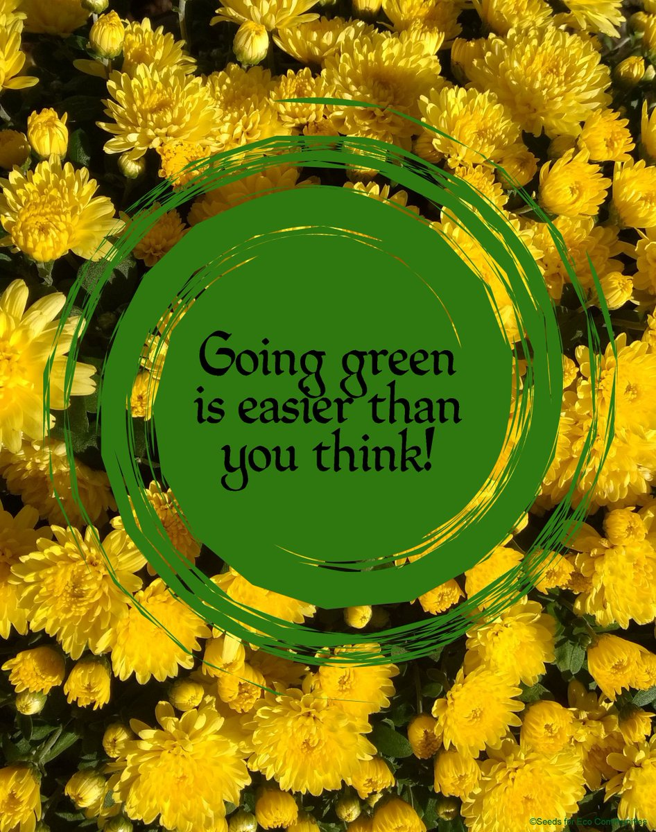 Going green is easier than you think! #eco #green #thoughtfortheday<br>http://pic.twitter.com/LmrRhbAHBS