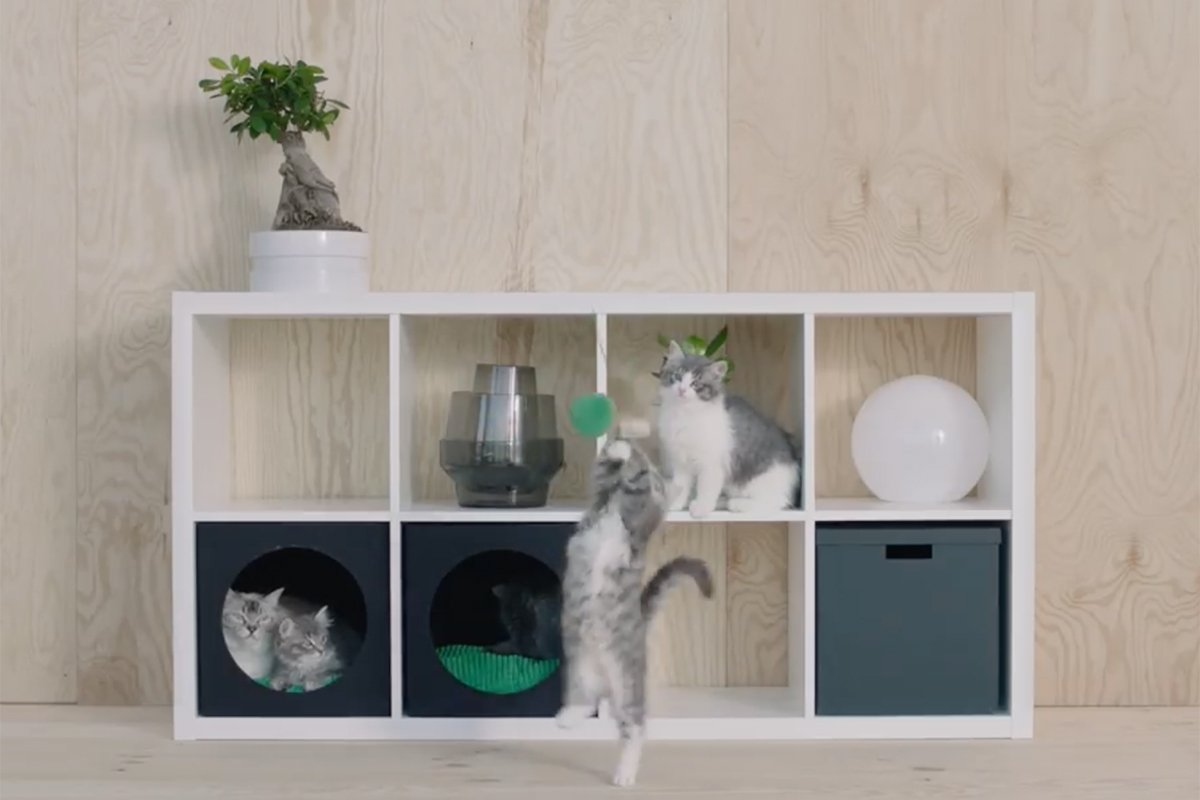 .@IKEAUSA debuts furniture for cats and dogs https://t.co/1y75jJFWiF https://t.co/jMRMrBT9Sb