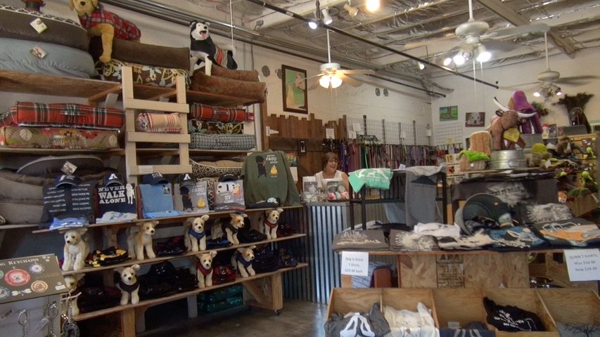 #Exploring new #shop&#39;s is an #adventure in itself! Watch our movie @  http:// crwd.fr/2wwNJex  &nbsp;    #dogs #puppy #travel #America #animals #pets<br>http://pic.twitter.com/7mUc6zJIIl