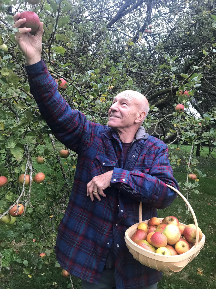 I've been picking apples in the autumn since before it was cool to post about it on Instagram.