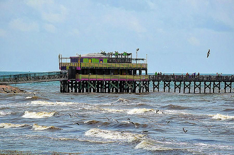 Galveston latest news breaking headlines and top stories for Best fishing times texas