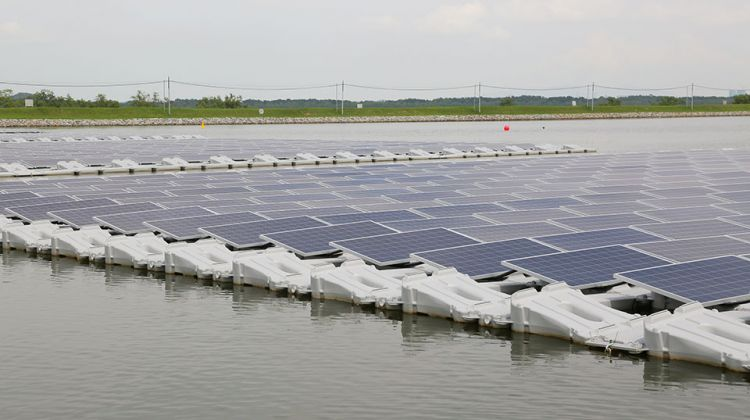 NGP to build 14MW floating #solar plant in Taiwan  https://www. pv-tech.org/news/ngp-to-bu ild-14mw-floating-solar-plant-in-taiwan &nbsp; … <br>http://pic.twitter.com/ultZiti8hN