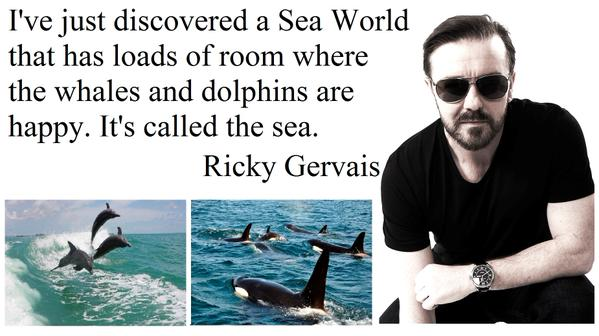 .@RickyGervais #Seaworld&#39;s boss heard about the &quot;sea&quot; Ricky but he wasn&#39;t convinced #Dolphins just want to go Home  http:// youtu.be/gdlnLurgcVs  &nbsp;   <br>http://pic.twitter.com/ztGV6MxQXA