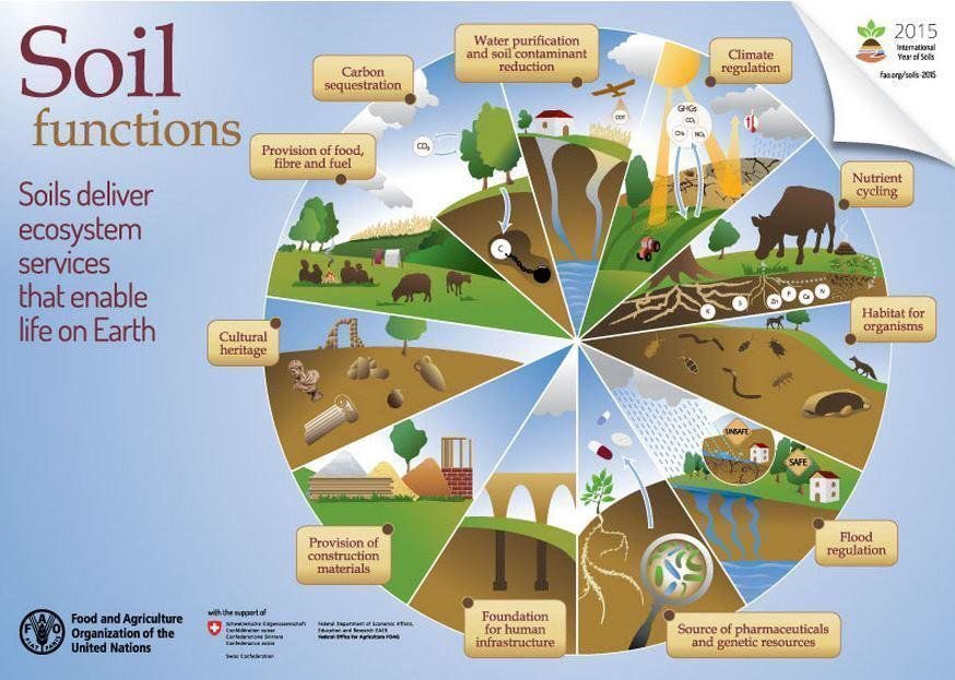 "Great meme and message from @FAOKnowledge : ""#Soils deliver #EcosystemServices that enable life on Earth"" <br>http://pic.twitter.com/CFHbXj9x1p"