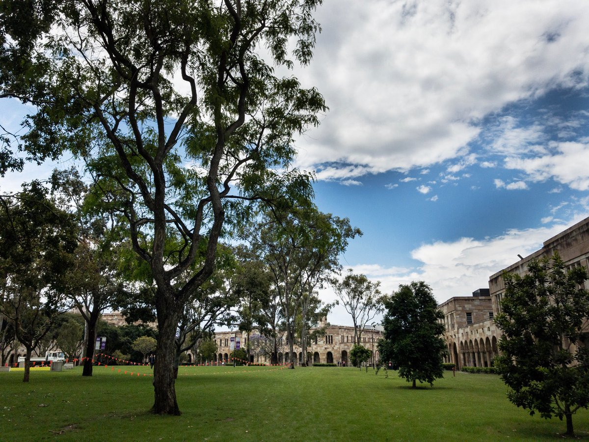 Great Court at UQ, post early rain storm. The parrots are making merry in the trees #UQ <br>http://pic.twitter.com/rbfTpEMqlm