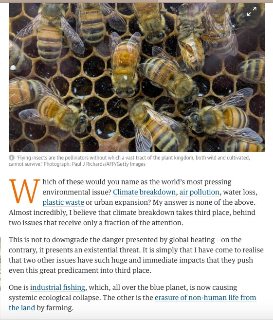 Insectageddon: #farming is more catastrophic than #climate breakdown. #bees #sustainable #farming #food #insecticide  https://www. theguardian.com/commentisfree/ 2017/oct/20/insectageddon-farming-catastrophe-climate-breakdown-insect-populations?CMP=share_btn_tw &nbsp; … <br>http://pic.twitter.com/rU2vd1O9Se