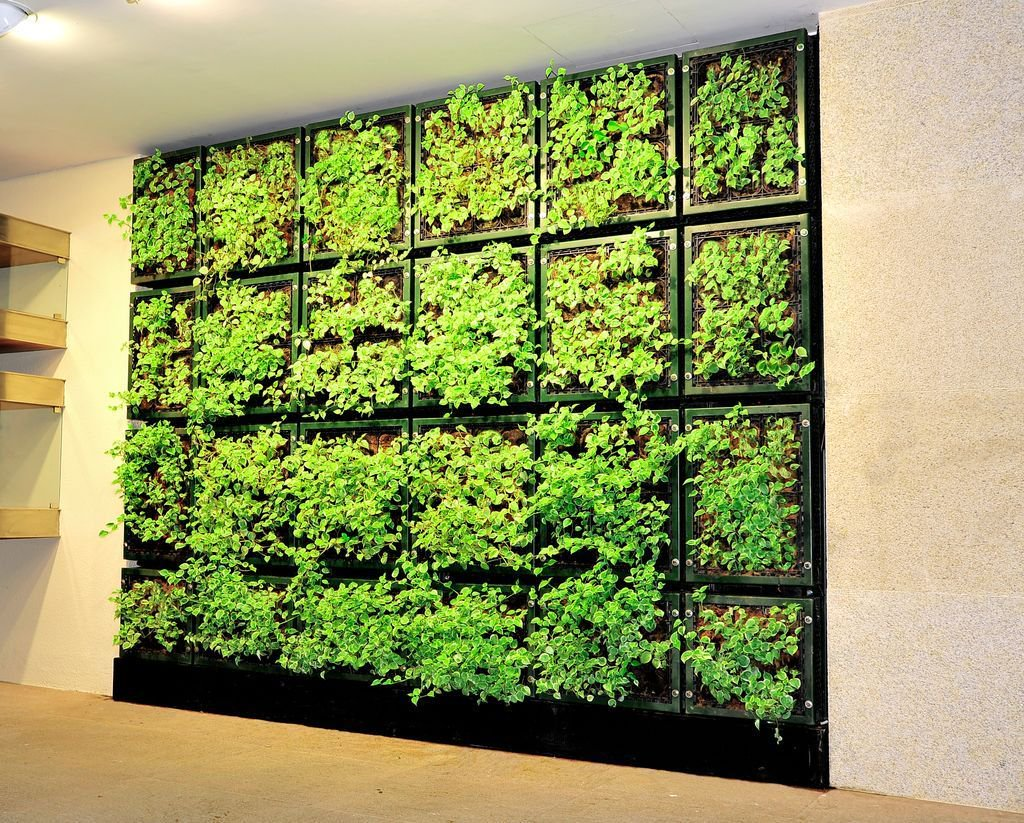 #GreenWall at the West Coast Plaza in #Singapore using #Enviro products  #AustralianMade<br>http://pic.twitter.com/09yERZpAgE