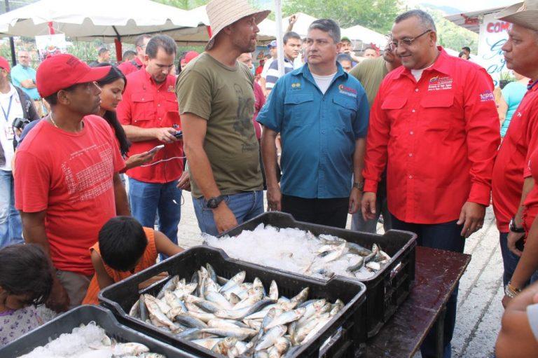 En Caracas: 40 toneladas de pescado fuer...