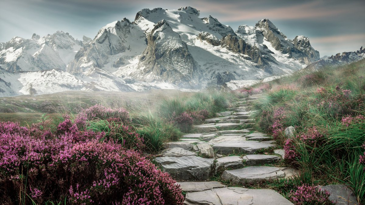 Someone said: as long as we are in the right direction, it does not matter so much the size of our steps. #strategy #values<br>http://pic.twitter.com/c0NzuUKAb7