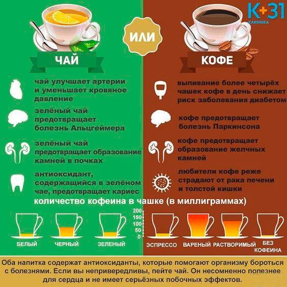 Зеленый чай содержит кофеин