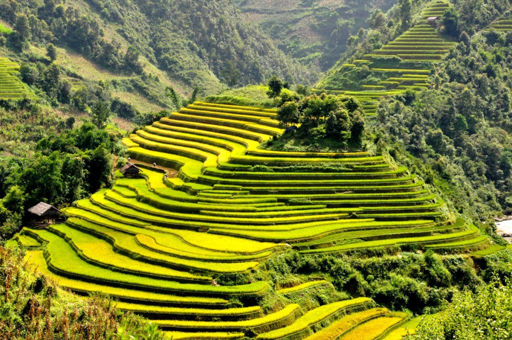 Vietnam is a gorgeous country &amp; here&#39;s 21 of the top places to visit in #Vietnam !  http:// bit.ly/2hVx0IA  &nbsp;    #travel #Guide #Blogs <br>http://pic.twitter.com/z0EhObyK2o