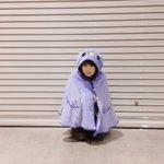 本日のコスプレ組。#コップのフチ子さん#女狐巫女#めんトリ pic.twitter.com/2m68…