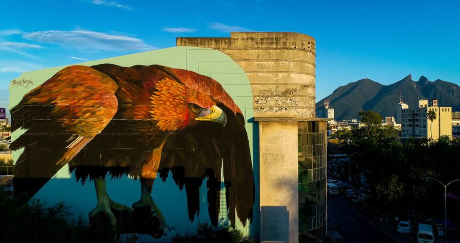 Saatchi Gallery On Twitter Thiago Mazza Chose The Golden Eagle As