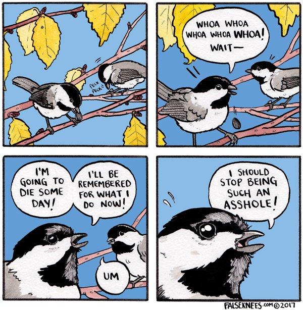 RT @FalseKnees: Whoa whoa whoa https://t.co/Rjp9BgNFhg #falseknees #comic #webcomic #chickadee #whoawhoawhoawhoaWHOA https://t.co/EKkQ9aWbwE